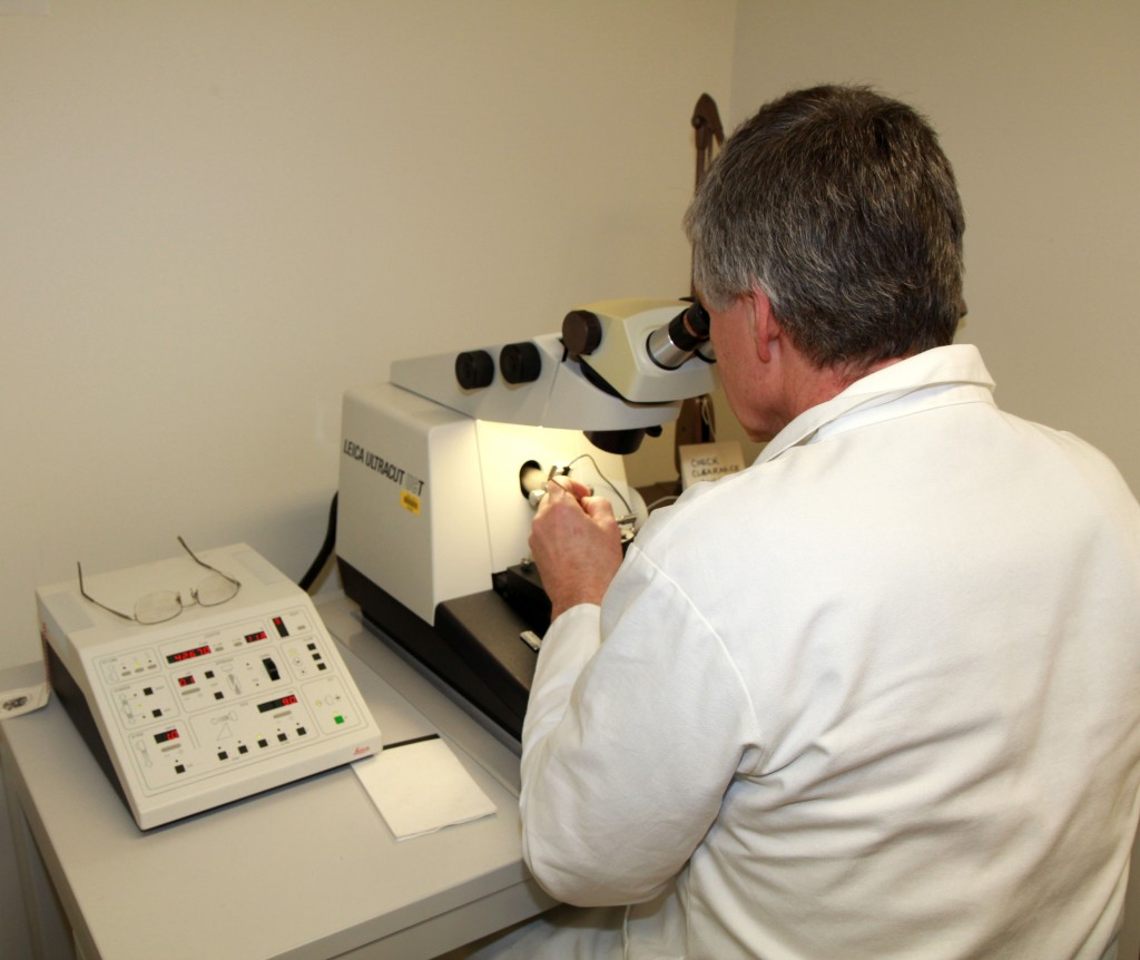 Steve operating microtome